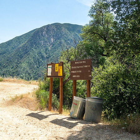 2-1/2 miles in, I hit the Marble Peak Trail junction.  (Service vehicles can drive this far in on the Arroyo Seco Road.  Somebody has to empty those bins.)