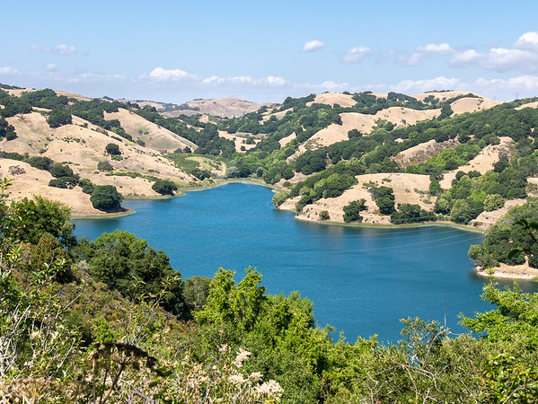 Briones Reservoir, as viewed from the trail maybe a mile east of the staging area.  The hills are definitely brown now.