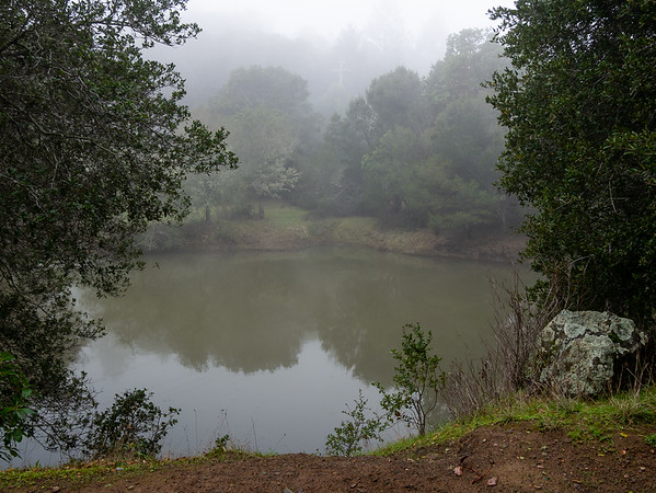 I started down at Alpine Lake, in a cold, murky fog.  The good news: the lake is full.