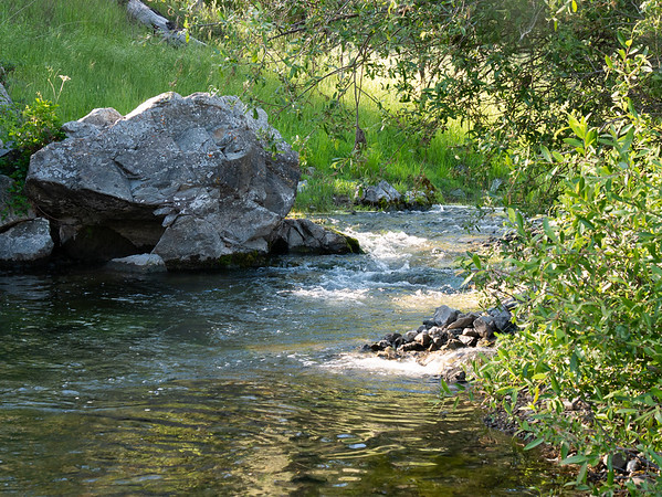 Coyote Creek is still a full stream here.