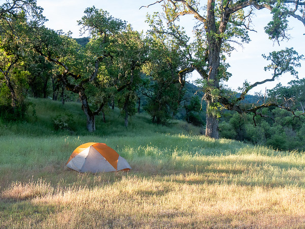 Wednesday, May 3.  Just a nice camp in the grass ...shining in the morning light.