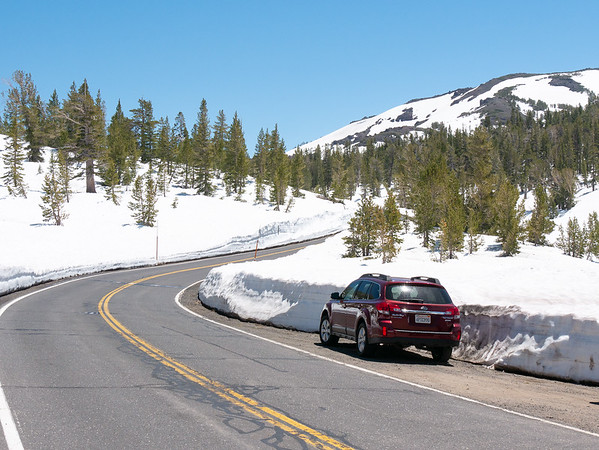 Sunday, June 18.  I crossed the Sierras on Sonora Pass since Tioga was still closed.  It's still a snowy up top.  I'm at around 9,400' here.