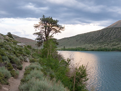 The view down the lake as I make my way back toward the campground area.  I'm mainly down in the junipers and sagebrush, but there is an occasion Jeffrey pine.  The trees end just below the lake.  This is not a Sierra Nevada view ...