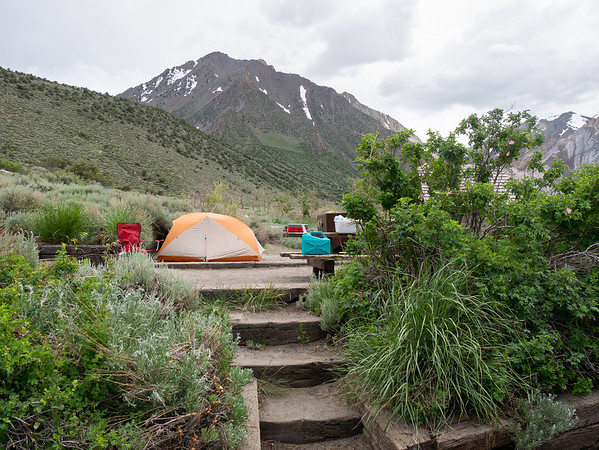 I camped at Convict Lake, just south of Mammoth.  I was planning to go further, but it was hot and dropping to an Owens Valley campsite would have been hotter yet.  I'm right at the edge of the Sierra Nevada and Great Basin regions: an appropriate place to start this trip.