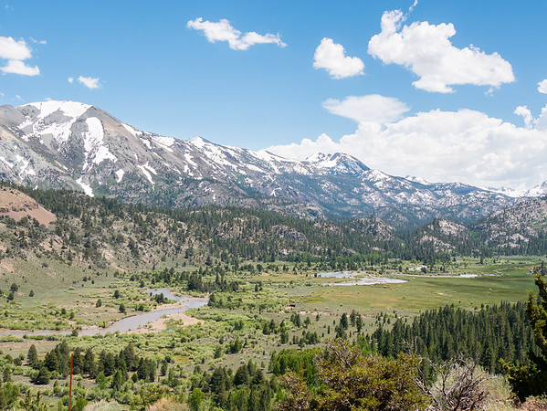 Leavitt Meadow at just over 7,000': green and open.  The Walker River is carrying plenty of runoff though.