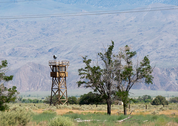 The reconstructed guard tower.  Originally there were eight.   I believe I read, perhaps in the site museum, that later in the war they weren't manned but were lit to reassure the Owens Valley residents.
