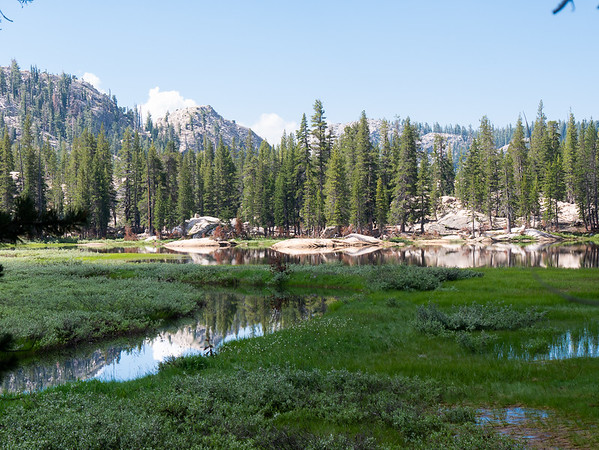 Below the PCT, I had more open views and saw more exposed granite trailside.  This pond at about 8,250', for example, looked to have some rocky shores where one could camp, but I'll bet those bogs produce prodigious mosquitoes at dusk.  There were adequate numbers now at 10:30.
