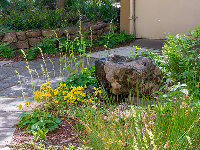2018 in the Garden