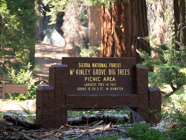 """I stopped here along the way.   Something over 200 big trees.  It is the southernmost of the eight """"northern"""" groves, the ones not in the main cluster of big trees in the drainages of S. Fork of the Kings, Kaweah, Tule, and Kern Rivers.  (The eight: Placer Co., N and S Calavaras, 3 in Yosemite, Nelder, and this.) _"""
