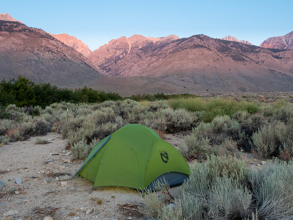 Tuesday, August 14.  A dawn view to the mountains, up Taboose Creek.  The row of green at the left is Taboose Creek corridor.  The trees are mainly water birch.