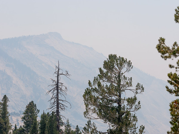 Monday, August 13.  I crossed the Sierras on SR 120 though Yosemite.  The Ferguson Fire was just about contained but still burning near the Arch Rock entrance.  It was throwing smoke up the Merced valley.  Clouds Rest from Olmstead Point was pretty faint.