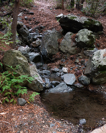 The more useful water source was 100 feet up the trail.
