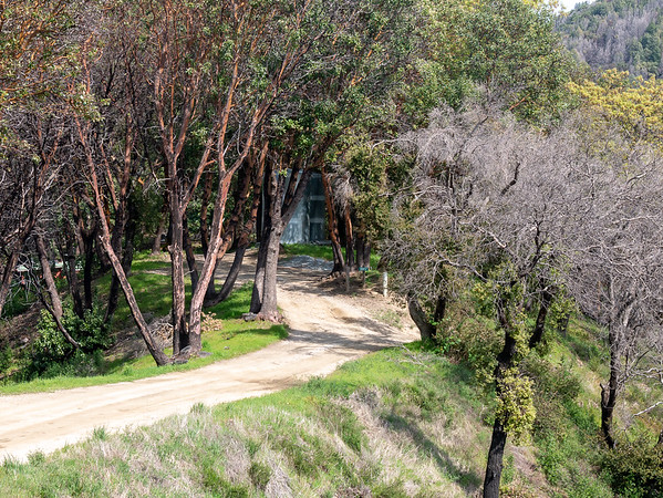 """The end of Long Ridge Road.  The road takes a sharp right down hill and the Turner Creek Trail departs about 100 yards down.  There''s no """"formal"""" or marked trailhead though."""