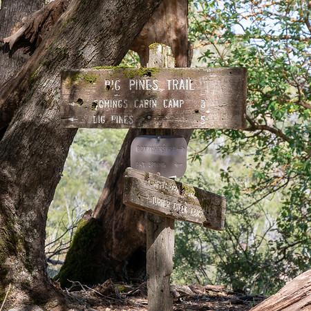 Turner Creek Saddle.  The old signs have survived!