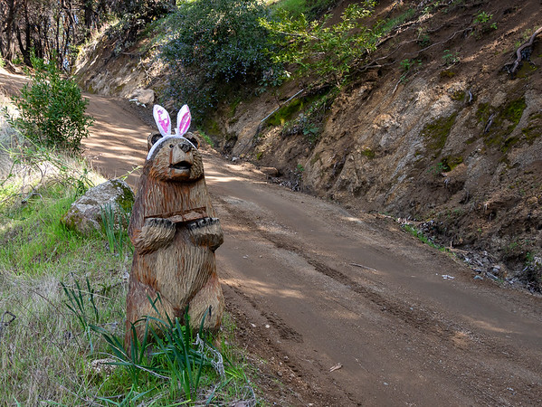 Tuesday, April 16.  I headed up the Long Ridge Road.  It's Easter this weekend.  The road's private, but is open to hikers.  (This photo is from the 18th.   One narrative for the trail in/out seemed better than two.)