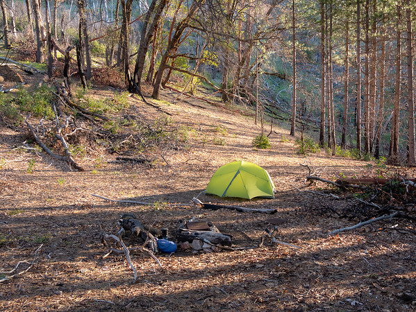 Wednesday, April 17.  Comings Camp.  My sense is that while a few more trees are gone, the basic character of the place is unchanged since may last visit in 2012 ... before the Soberanes Fire.