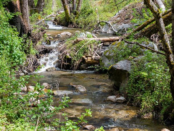 Turner Creek.