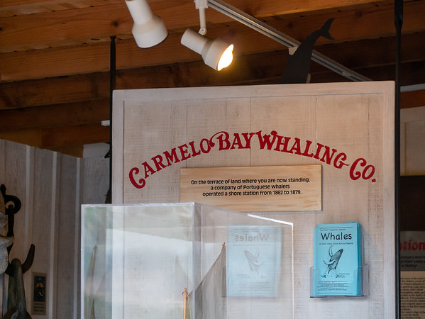 The display in the shed next to the Whaler's Cabin.