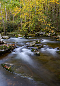 Fall in Smoky Mountains National Park