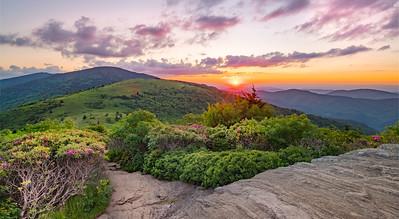 June Sunset at Roan Mountain
