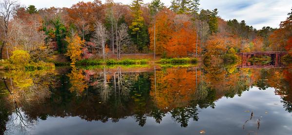 Bass Pond Biltmore Estate