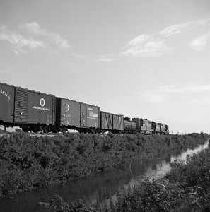 2018.008.CIM.F.062--bruce meyer 120 neg--C&IM--diesel freight train--south of Pekin IL--1959 0529