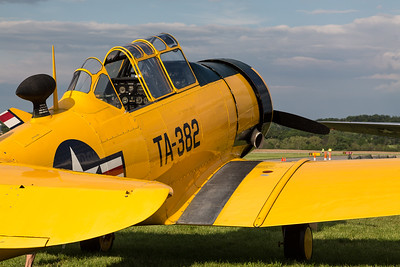 T-6 in Yellow