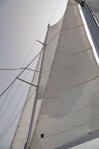YM9A1381