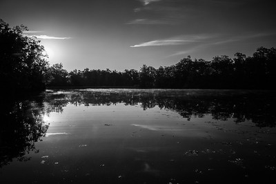 Cacapon Park: Fall in B&W