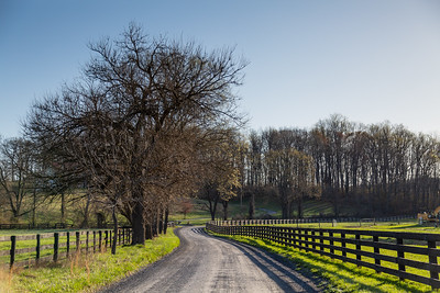 Country Lane, Springtime in Loudoun County