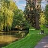 Brueton Park