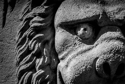 Lion Face - Briges, Belgium