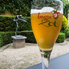 Belgian beer is the best! Our garden in the lovely apt. we rented for a week.