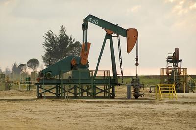 Nodding Donkeys: Die stehen hier überall. Damit wird an Land das Öl nach oben gepumpt.