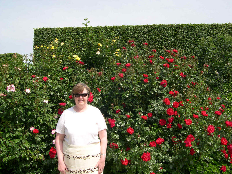 Susan by a rose hedge.