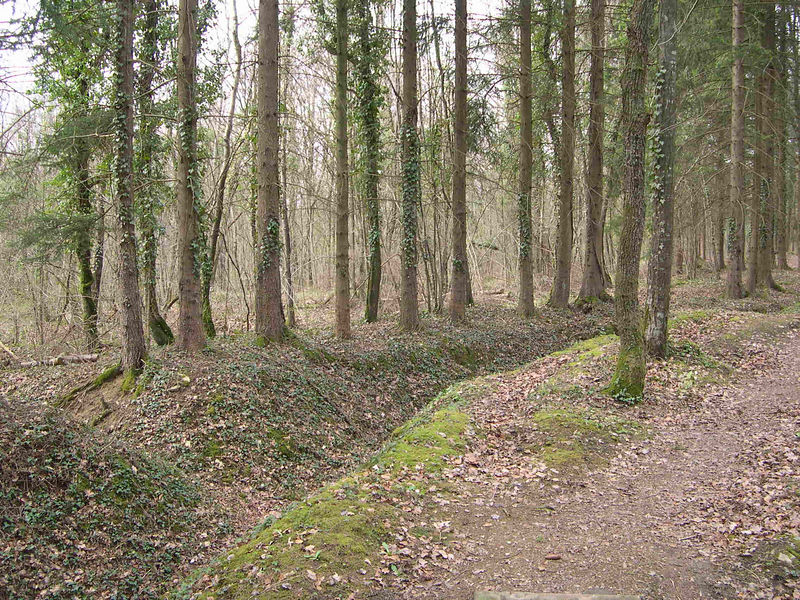 The Trench of Thirst on the hills above the Meuse river.  Some of the best preserved German trenches left from the war, it commemorates a battle between the French and Germans where heat and thirst were a major problem for the soldiers.