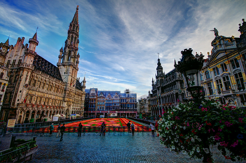 Brussels Carpet of Flowers Early Morning