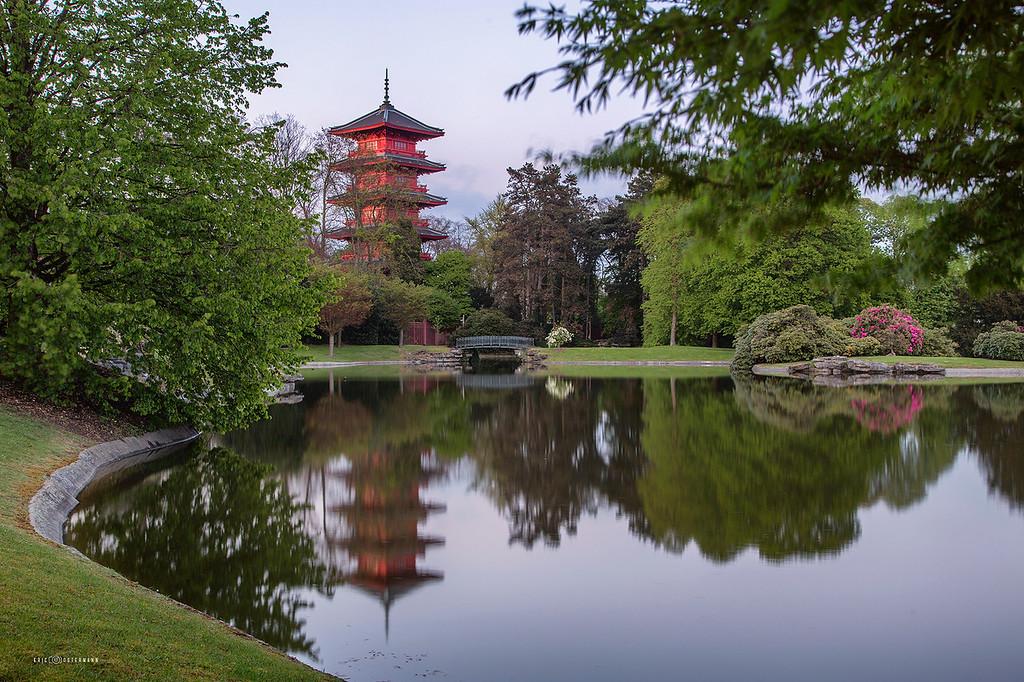 Tour Japonaise -  Laeken