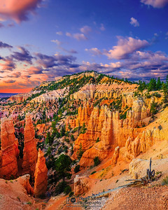 """Hoodoo Glow,"" Dawn at Bryce Canyon, Bryce Canyon National Park, Utah"