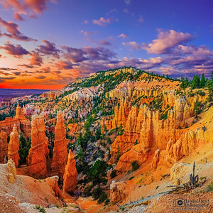 """Red Dawn,"" Bryce Canyon National Park, Utah"