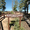 Black Birch Canyon