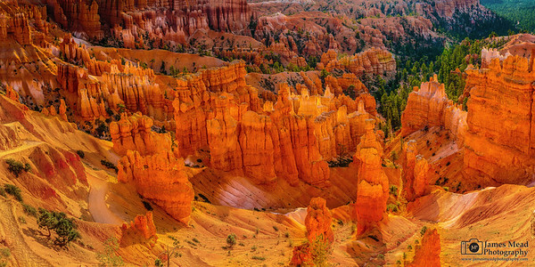 """The Red Hour,"" Bryce Canyon National Park, Utah"