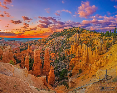 """Fairyland Dawn,"" Bryce Canyon National Park, Utah"