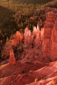 Dawn light on Hoodoos