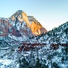 Zion Valley #23
