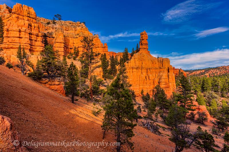 20170416_Bryce Canyon_1224