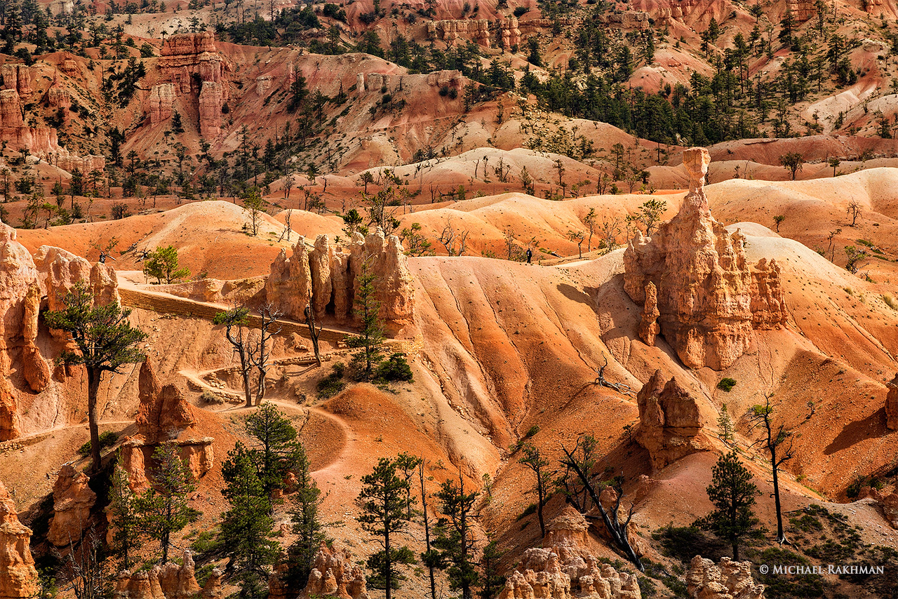 "Spectacular ""Sculptures"" of Bryce Canyon"