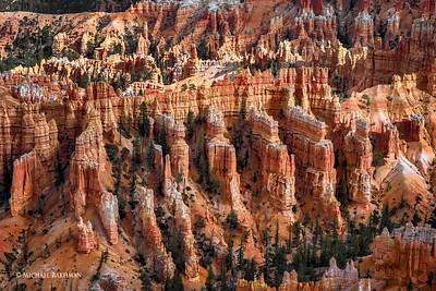 """Terracotta Warriors"" of Bryce Canyon"