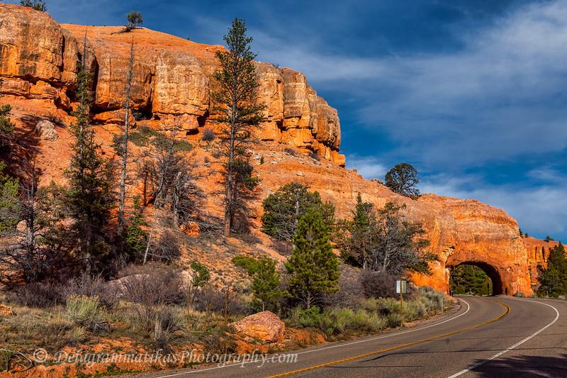 20170416_Bryce Canyon_1193
