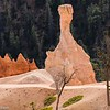 Hoodoo in Fairyland, Bryce Canyon.